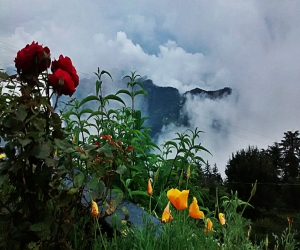 Beautiful Shimla Trip