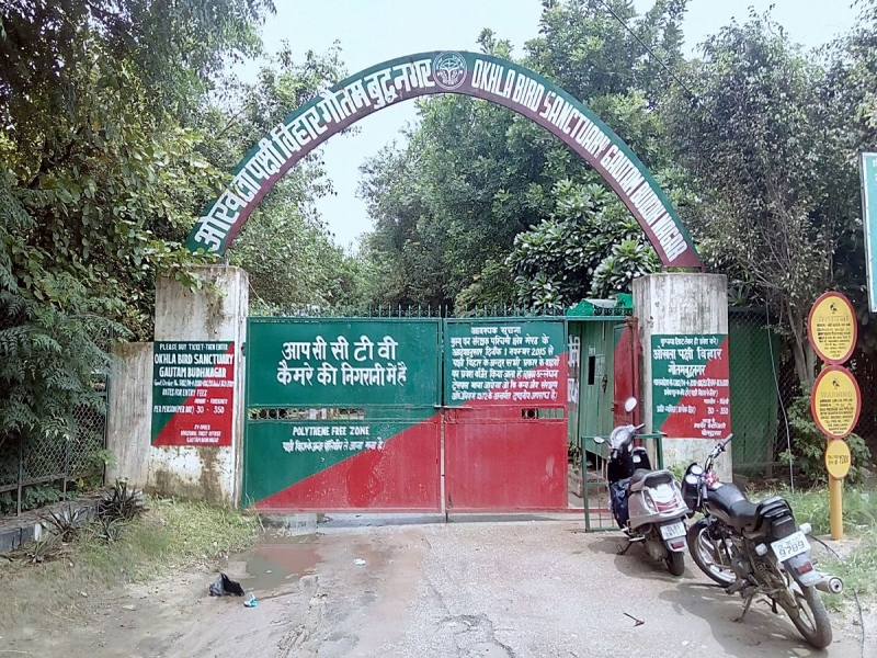 Okhla Sanctuary