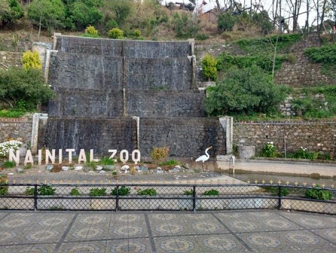 Nainital Zoo