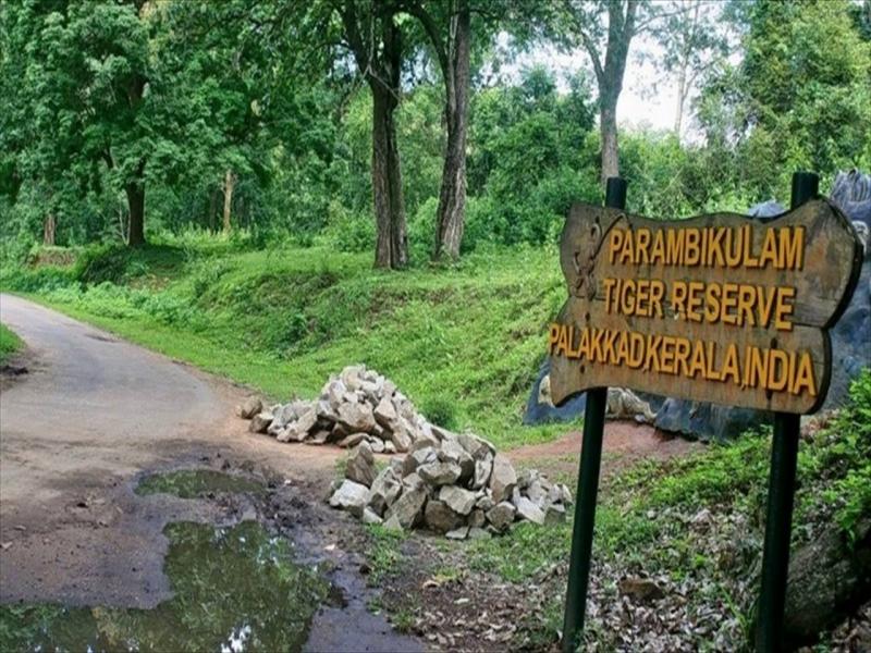 Shimla Reserve Forest Sanctuary and Catchment Area