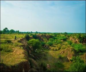 Rajokri Protected Forest Delhi