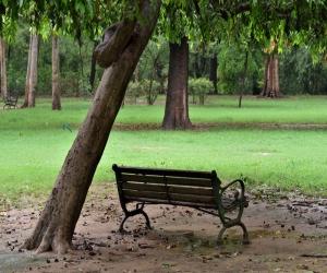Deer Park Delhi
