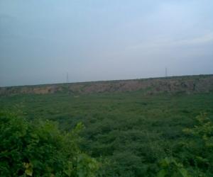 Badkhal Lake Delhi