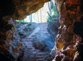 Eco Cave Gardens