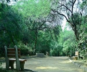 Jahanpanah Forest Delhi