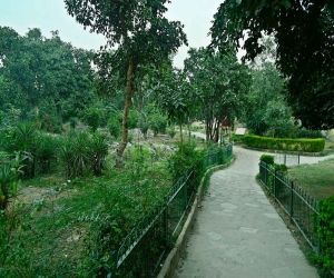 Delhi Ridge