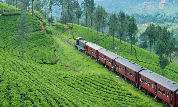 IRCTC is offering three South India tour packages under INR 20,000