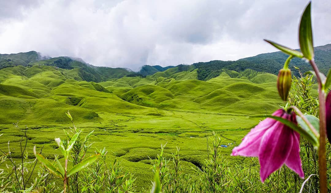 Plastic ban restores Nagaland Dzukou valley in its natural beauty